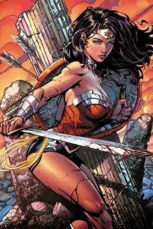Hero / Villain | Wonder Woman by David Finch