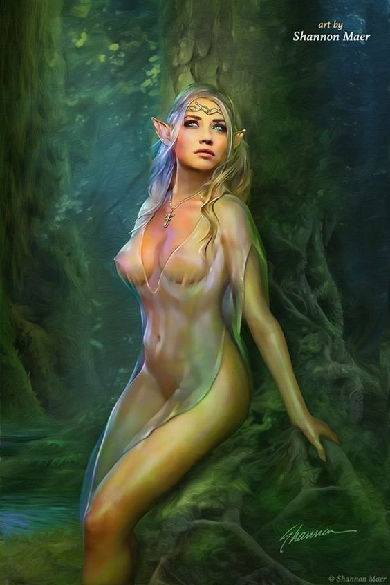 Elf Queen by Shannon Maer