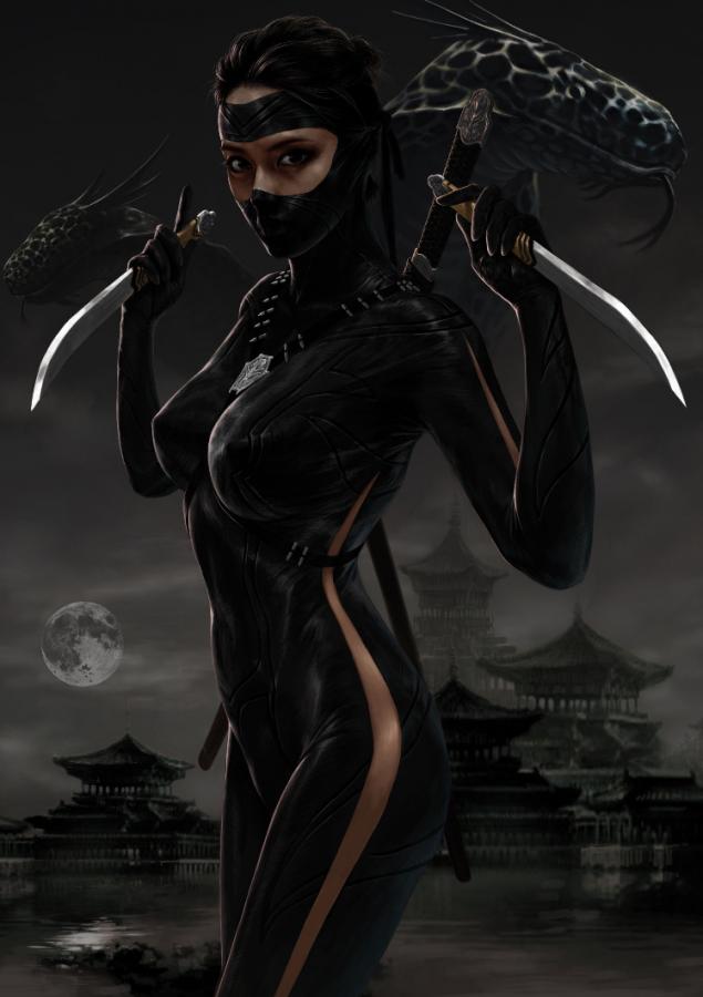 Ninja by anna montoya